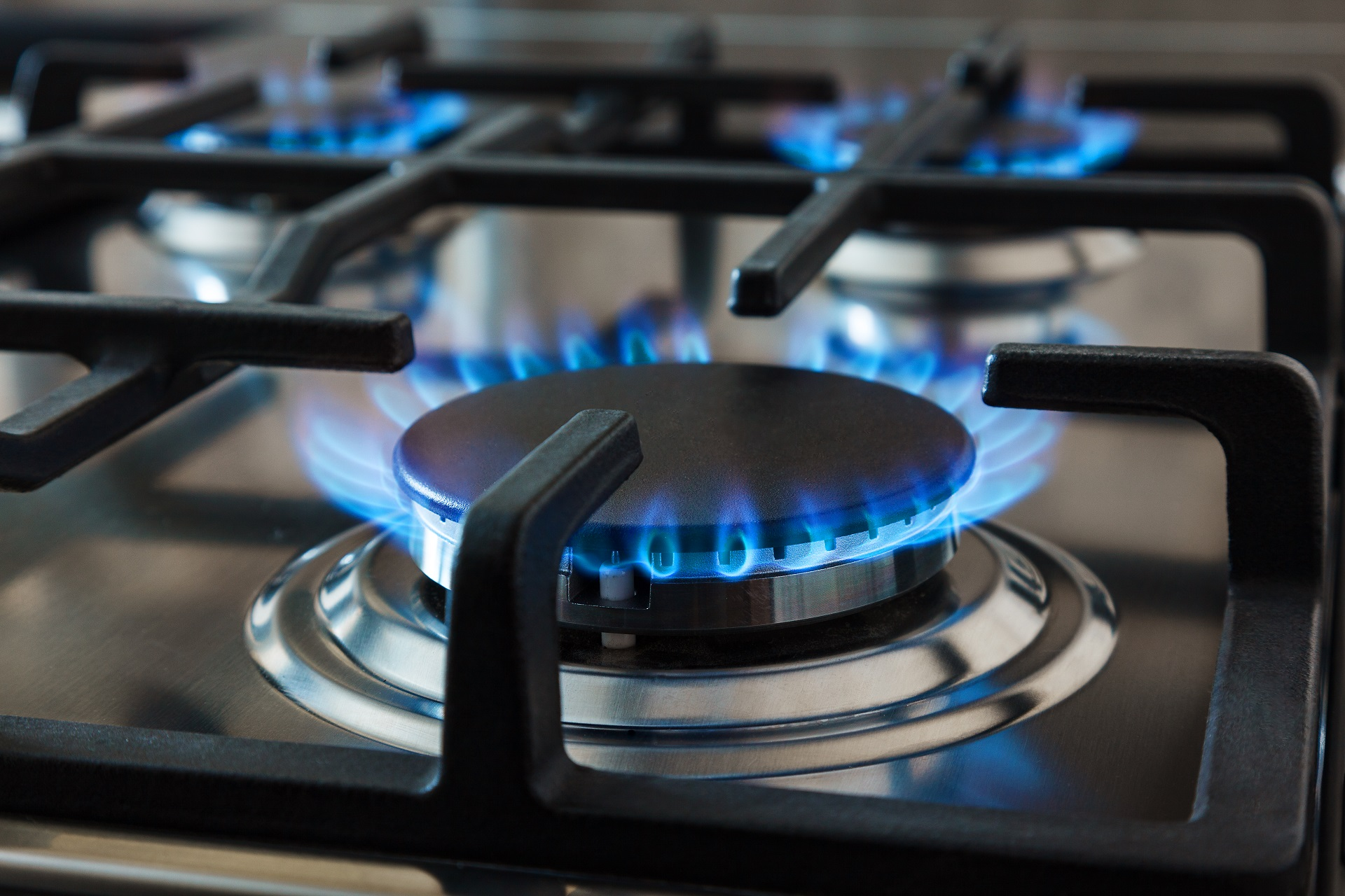 Best Professional Gas Range For The Home Review: Top in ...