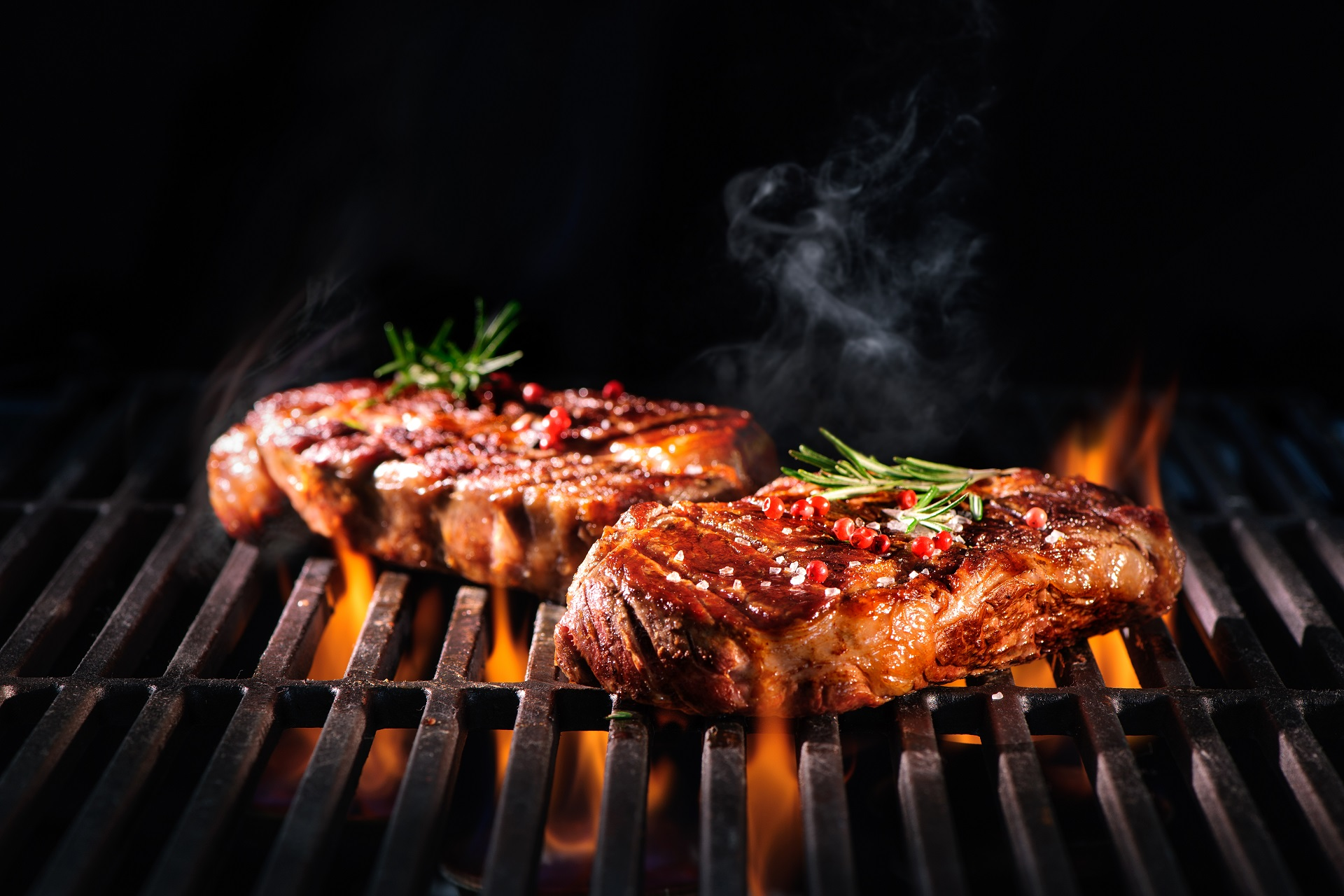 5 Best Gas (Propane) Charcoal Combo Grills: Top-5 in August 2019!