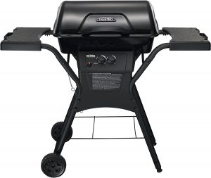 best 2 burner gas grills Thermos gas grill